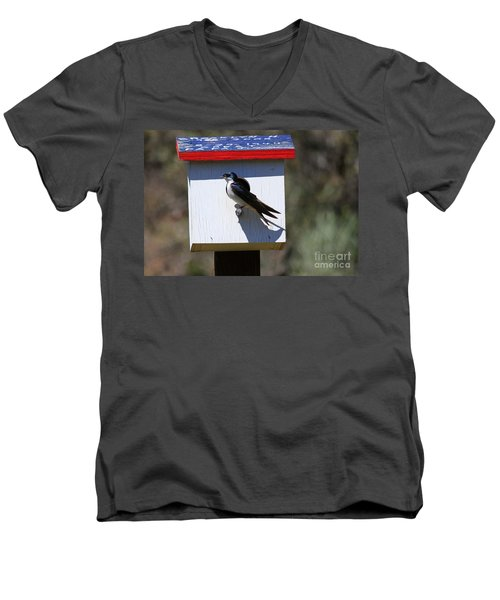 Tree Swallow Home Men's V-Neck T-Shirt by Mike  Dawson