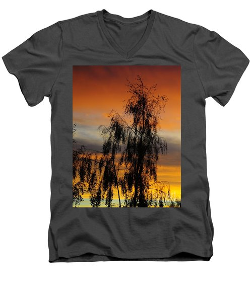 Trees In The Sunset Men's V-Neck T-Shirt