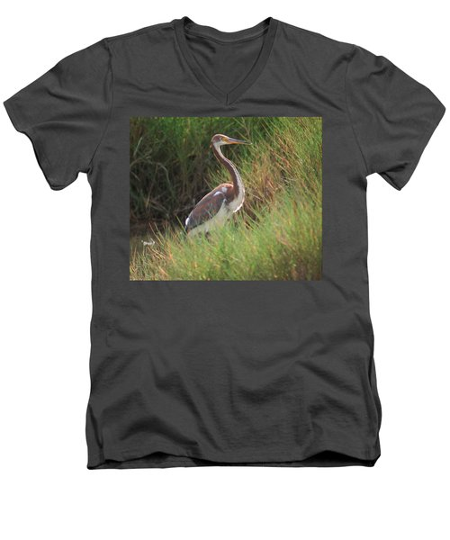Men's V-Neck T-Shirt featuring the photograph Tri-color Heron by Leticia Latocki