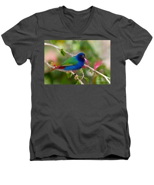 Men's V-Neck T-Shirt featuring the photograph Tricolor Parrot Finch by Les Palenik