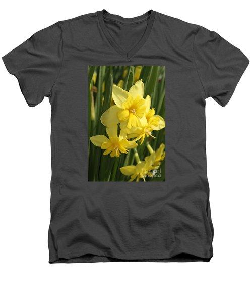 Tripartite Daffodil Men's V-Neck T-Shirt by Judy Whitton