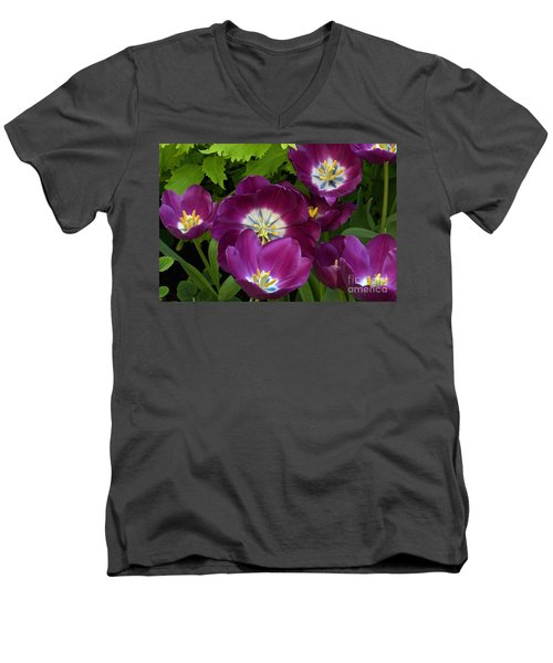 Triumph Tulips Negrita Variety Men's V-Neck T-Shirt