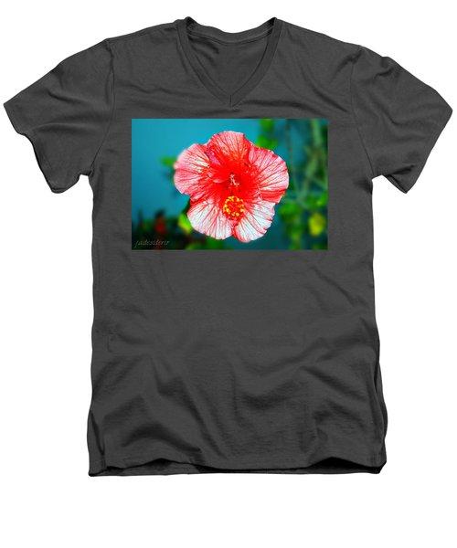Tropical Burst Redux Men's V-Neck T-Shirt