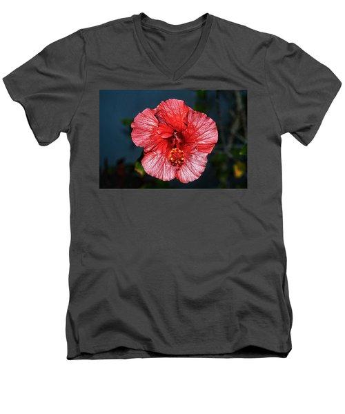 Tropical Burst Subdued Men's V-Neck T-Shirt