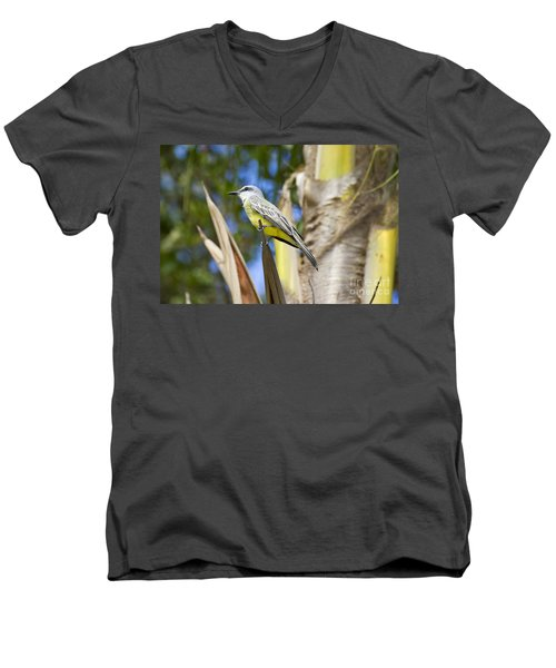 Men's V-Neck T-Shirt featuring the photograph Tropical Kingbird by Teresa Zieba