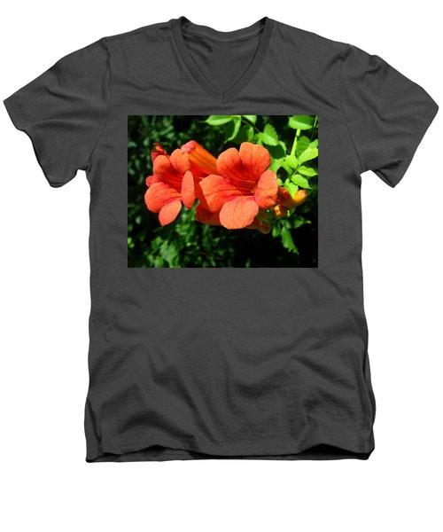 Wild Trumpet Vine Men's V-Neck T-Shirt
