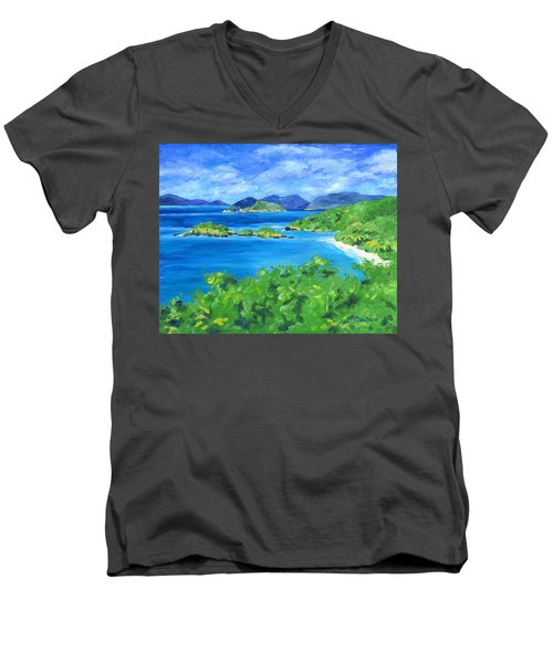 Trunk Bay Men's V-Neck T-Shirt