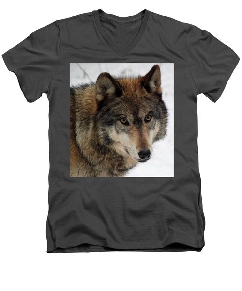 Men's V-Neck T-Shirt featuring the photograph Trusting by Richard Bryce and Family