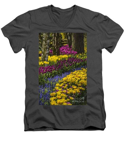Tulip Beds Men's V-Neck T-Shirt