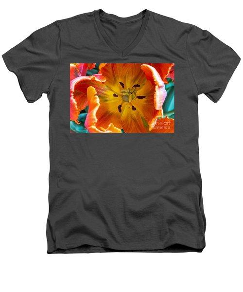 Tulip Two Men's V-Neck T-Shirt