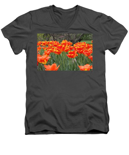 Men's V-Neck T-Shirt featuring the photograph Tulips From Brooklyn by John Telfer
