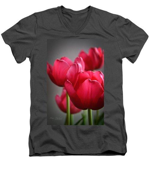 Tulips In The  Morning Light Men's V-Neck T-Shirt