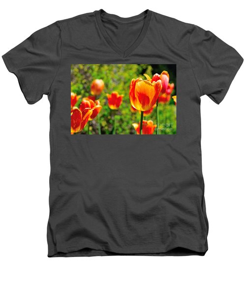 Men's V-Neck T-Shirt featuring the photograph Tulips by Joe  Ng