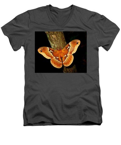 Tuliptree Silkmoth Men's V-Neck T-Shirt