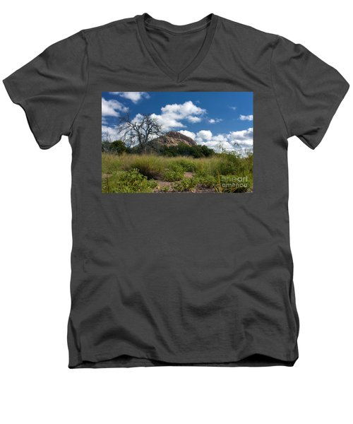 Turkey Hill Men's V-Neck T-Shirt