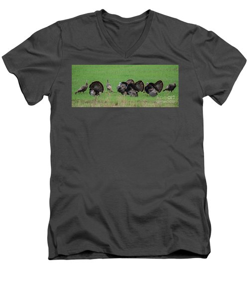 Turkey Mating Ritual Men's V-Neck T-Shirt