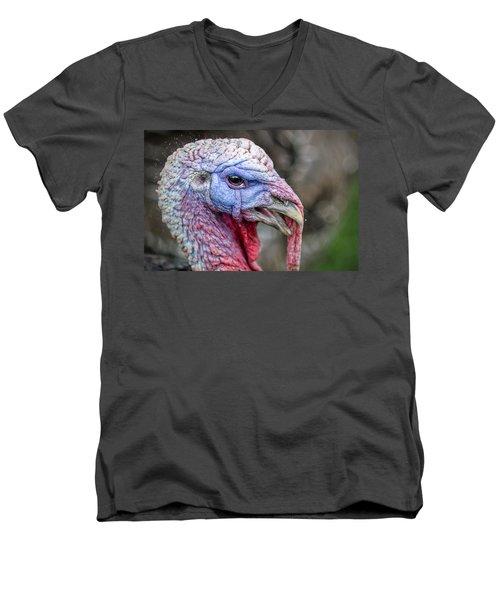 Turkey Men's V-Neck T-Shirt by Rick Mosher