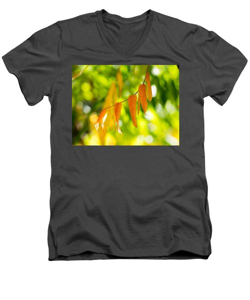 Men's V-Neck T-Shirt featuring the photograph Turning Autumn by Aaron Aldrich