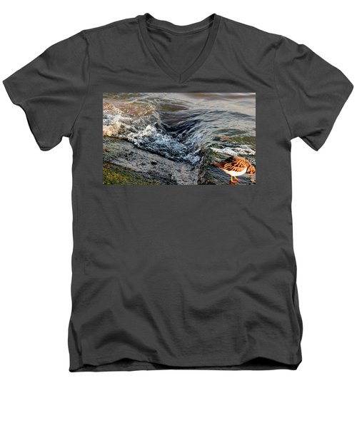 Turnstone By The Water Men's V-Neck T-Shirt