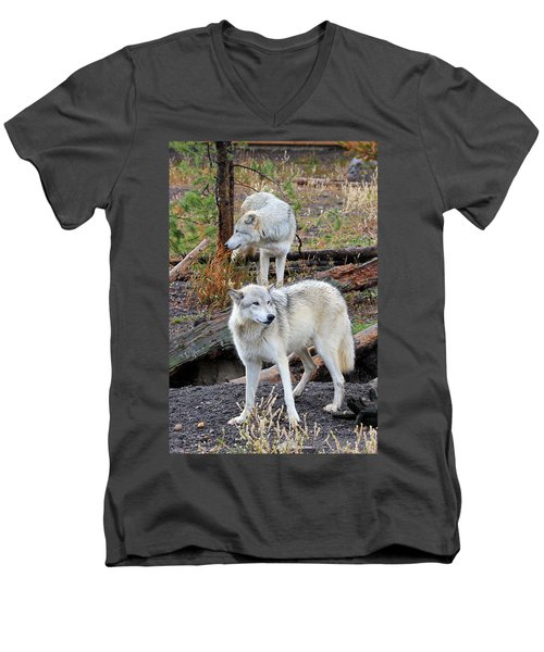 Men's V-Neck T-Shirt featuring the photograph Twin Wolves by Athena Mckinzie