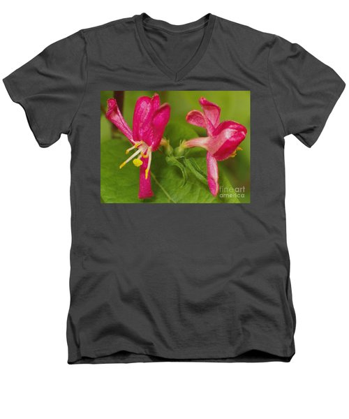Men's V-Neck T-Shirt featuring the photograph Twins by Sara  Raber