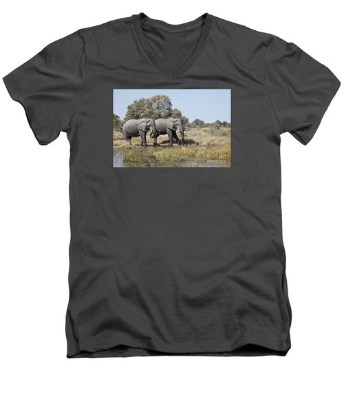 Two Bull African Elephants - Okavango Delta Men's V-Neck T-Shirt by Liz Leyden