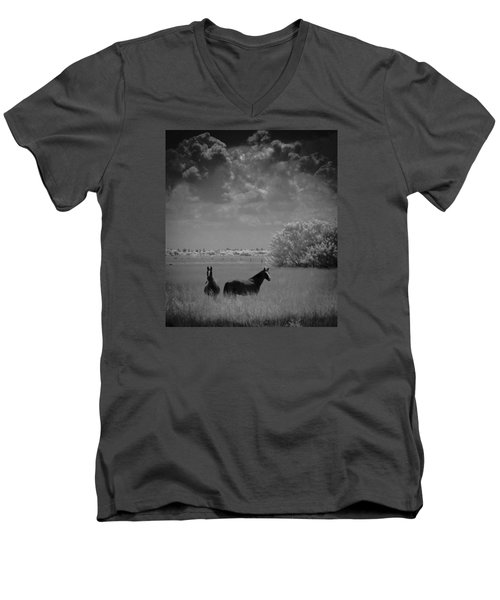 Two Horses Men's V-Neck T-Shirt by Bradley R Youngberg