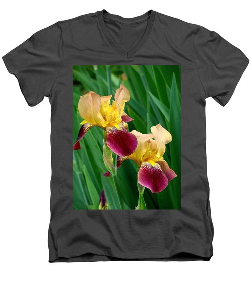 Two Iris Men's V-Neck T-Shirt by Rodney Lee Williams