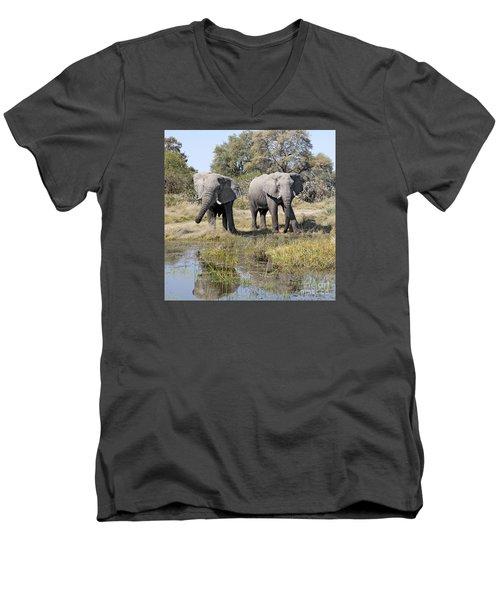 Men's V-Neck T-Shirt featuring the photograph Two Male Elephants Okavango Delta by Liz Leyden