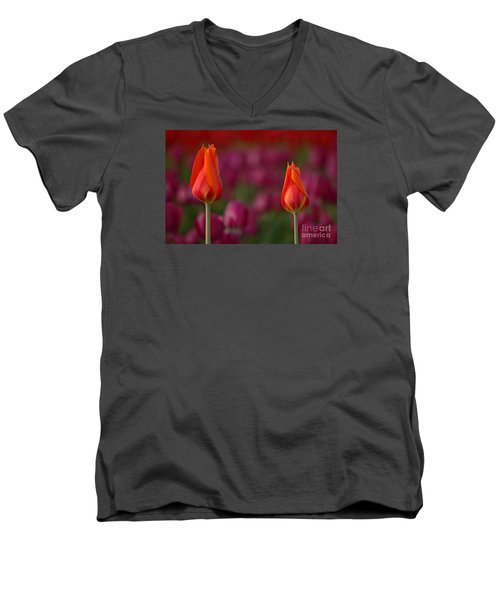 Men's V-Neck T-Shirt featuring the photograph Two Of A Kind by Nick  Boren