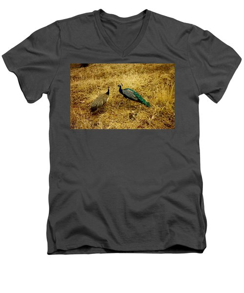 Men's V-Neck T-Shirt featuring the photograph Two Peacocks Yaking by Amazing Photographs AKA Christian Wilson
