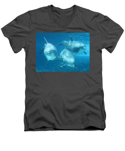 Underwater Dolphin Encounter Men's V-Neck T-Shirt by David Nicholls