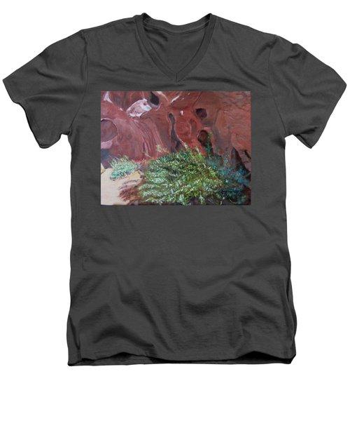 Valley Of Fire State Park Men's V-Neck T-Shirt