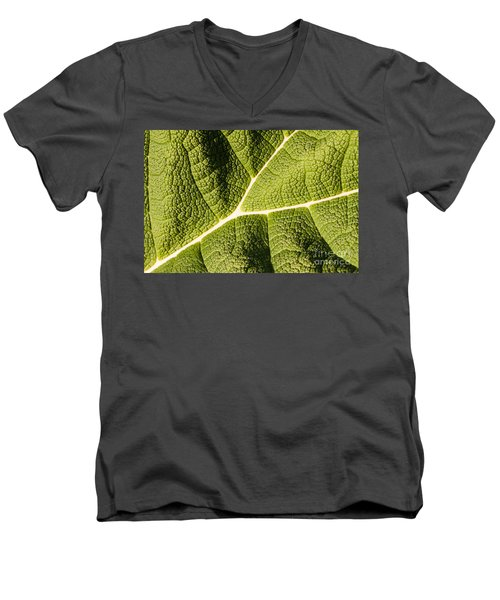 Men's V-Neck T-Shirt featuring the photograph Veins Of A Leaf by John Wadleigh
