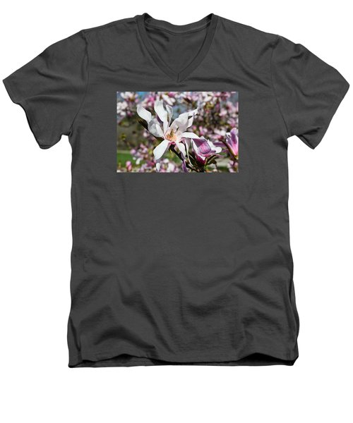 Men's V-Neck T-Shirt featuring the photograph Velvet by Julie Andel