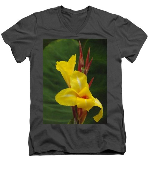 Velvety Yellow Iris  Men's V-Neck T-Shirt