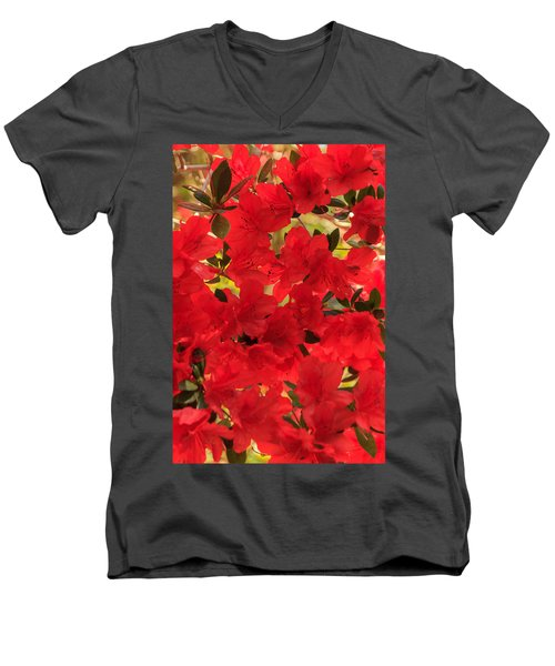 Vibrant Azalea Men's V-Neck T-Shirt