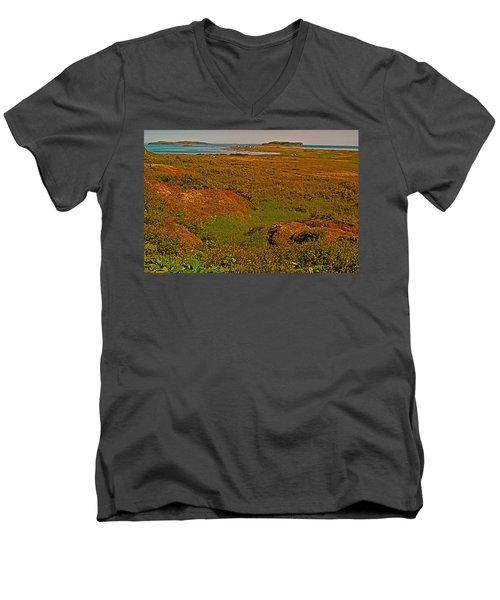 Viking Landing Point At L'anse Aux Meadows-nl Men's V-Neck T-Shirt