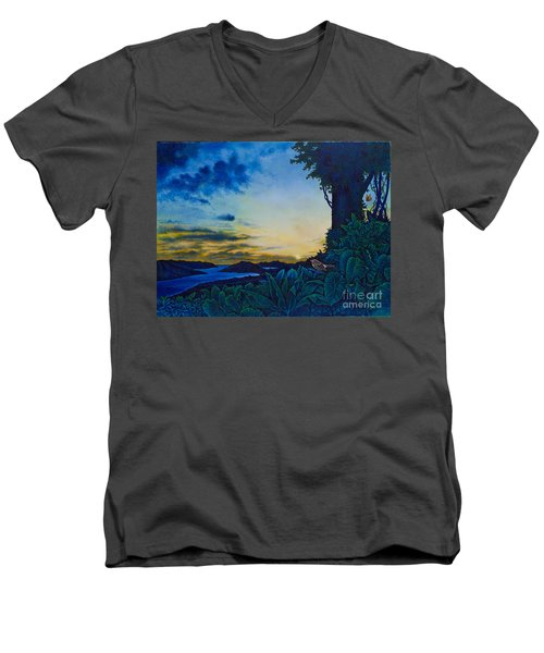 Visions Of Paradise II Men's V-Neck T-Shirt