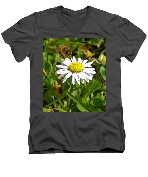 Visiting Miss Daisy Men's V-Neck T-Shirt by Nina Ficur Feenan