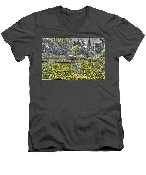 Visitors On Daffodil Hill Men's V-Neck T-Shirt