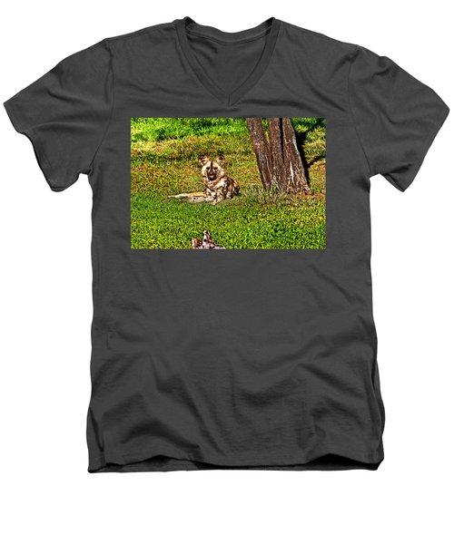 Waching You Men's V-Neck T-Shirt