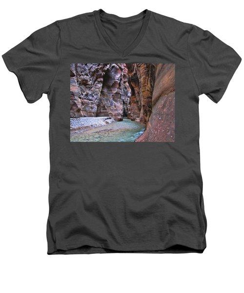 Wadi Mujib Men's V-Neck T-Shirt