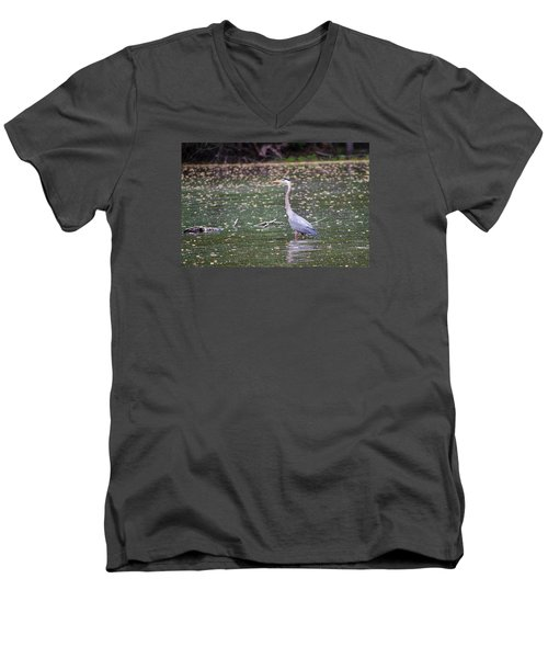 Men's V-Neck T-Shirt featuring the photograph Wading Crane by Susan  McMenamin