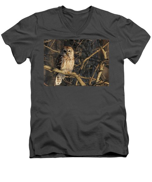 Waiting For Supper Men's V-Neck T-Shirt by Lori Deiter