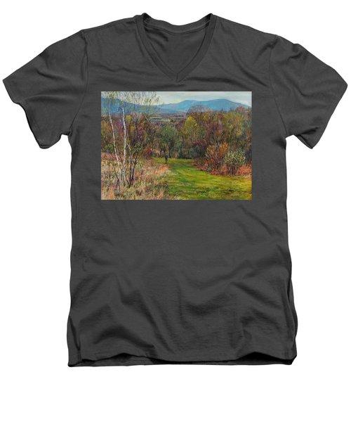 Walking Through The Woods In Spring Men's V-Neck T-Shirt