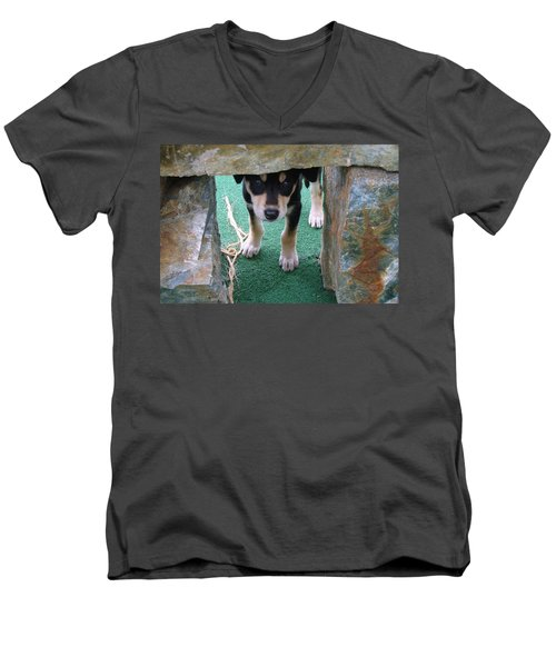 Wannabe Sled Dog In The Yukon Men's V-Neck T-Shirt by Richard Rosenshein