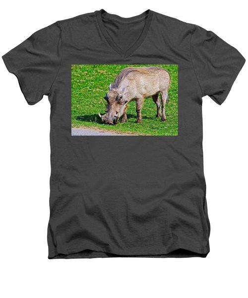 Warthog In Addo Elephant Park Near Port Elizabeth-south Africa  Men's V-Neck T-Shirt