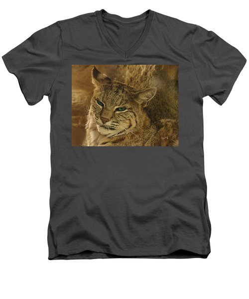 Wary Bobcat Men's V-Neck T-Shirt