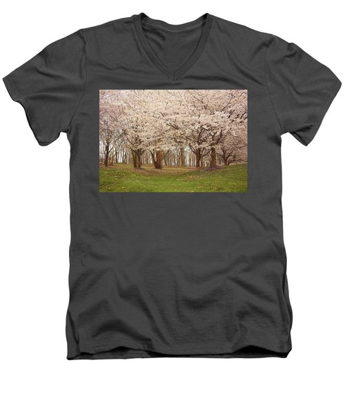 Washington Dc Cherry Blossoms Men's V-Neck T-Shirt